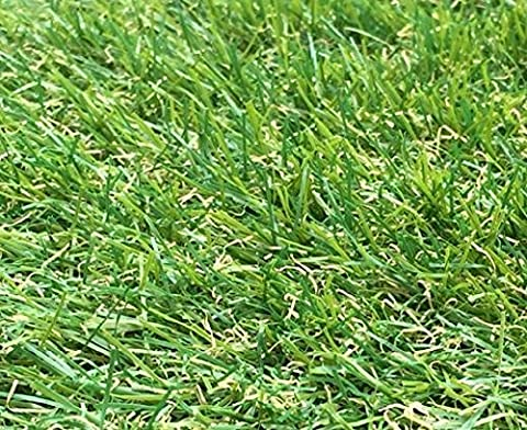 2m x 1m Berlin 26mm Pile Height Artificial Grass | Natural & Realistic Looking Astro Garden Lawn | 3 ft 3 Inch x 6 ft 5 Inch | 100cm x 200cm | 39 x 79 Inches | High Density Fake