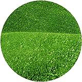 WENZHE Prato Sintetico Tappeti Erba Sintetica Tappeto Verde Erba Artificiale 10 Mm Simulazione Verde Ornamento, più Dimensioni (Color : 10mm, Size : 1x6m)