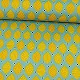 Canvas Stoff - PVC Beschichtung - Zitronen Taschenstoff -