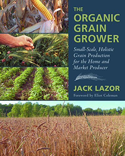 The Organic Grain Grower: Small-Scale, Holistic Grain Production for the Home and Market Producer por Jack Lazor