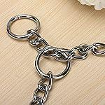Kungfu Mall Pet Strong Steel Metal Training Pet Choker Chain Collar (L) 13