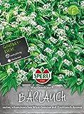 Sperli Gemüsesamen Bärlauch Waldknoblauch, grün