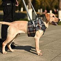 Neuerscheinungen Die Beliebtesten Neuheiten In Sicherheitsgeschirre Für Hunde