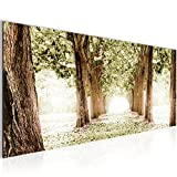 Bilder Wald Landschaft Wandbild 100 x 40 cm Vlies - Leinwand Bild XXL Format Wandbilder Wohnzimmer Wohnung Deko Kunstdrucke Grün 1 Teilig -100% MADE IN GERMANY - Fertig zum Aufhängen 605612c