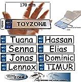 EU Kinder Nummernschild Party Schilder KFZ Namenschilder Kinderfahrzeug Schilder personalisiert 170mm x 40mm mit Klebestreifen auf der Rückseite