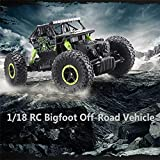 #6: Brand Conquer Dirt Drift Waterproof Remote Controlled Rock Crawler RC Monster Truck, 4 Wheel Drive, 1:18 Scale 2.4 Ghz (Multi Colour)