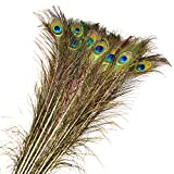 Genuino Piuma,FOKOM 20 Pack 90CM Piume di Pavone Natural Peacock Feather