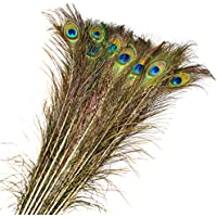 15000P 20 Piezas 90cm Plumas de Pavo Real Natural Peacock Feathers