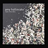 Amy Hollinrake: fade into this (Audio CD)