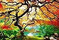 Bilder Startoshop, nachtleuchtende Leinwandbild oder selbstklebende Fototapete, Wandsticker, Wandbild Baum, Ahorn im Herbst