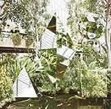 Songtexte von Clean Bandit - New Eyes