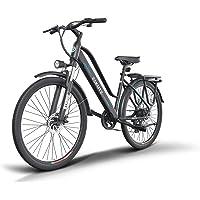 ESKUTE Elektrofahrrad 28 Zoll Pedelec E Citybike,Wayfarer' mit 36V 10Ah Lithium-Akku, 250W Heckmotor Hollandrad, Deine…