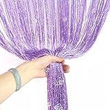 aihometm Quaste Perlen Vorhang Kristall Perlen Design mit Silber Gewinde String Tür Vorhang Fenster für Raumteiler Trennwand (100cm x 200cm/99,1x 198,1cm Zoll) Violett