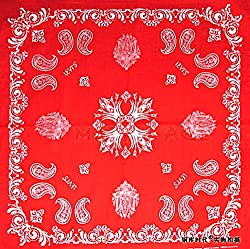 Gastro Club Red Paisley Premium Bandana by Gastro Club