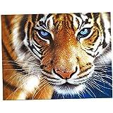 MagiDeal Full Drill 5D Diamond DIY Painting Craft Kit Home Wall Hanging Decor - tiger, 35x30cm