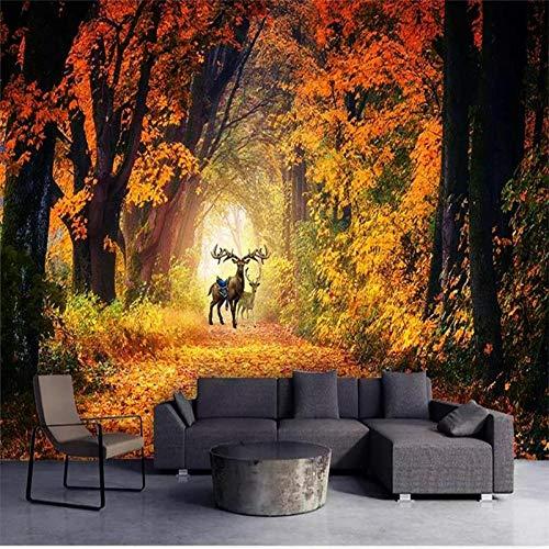 YOOMAY Benutzerdefinierte Fototapete Wand wohnzimmer Fall Avenue Wald Bild Malerei Wandhaupt Innendekoration Tapeten, 350x245 cm (137.8 by 96.5 in)