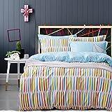 decoking 99957Ropa de cama 135x 200cm Cama Infantil con 1funda de almohada de 80x 80Juego de cama fundas de cama de cama de microfibras gaardi cremallera Basic Collection Stiches Color Blanco Azul Claro Naranja Verde Claro Color Rosa