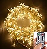 EchoSari 31 Meters 300 Warmweiß LED Outdoor LED String Lichterkette Batterie betrieben mit Fernbedienung (Dimmbar, Timer, 8 Betriebsarten) wasserdicht IP65 für Party Hochzeits Schlafzimmer Zelt RV BBQ Party Cafe Gazebo Events