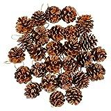 Mirrwin Kerstboom Dennenappels Natuurlijke Dennenappels Dennenappelboomversieringen Kerstboomversieringen Dennenappels voor Cadeaukaartjes Kerstboom Feest Hangende Decoratie 30 Stuks (Bruin)