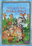 Meine große bunte Bilder-Bibel