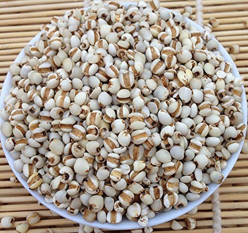 yi-yi-ren-coix-seeds-semen-coicis-lachrymae-jobi-chinese-pearl-barley-1lb