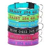Personalisierte benutzerdefinierte Hundehalsband, bestickt Hund Name und Telefonnummer, Sicherheitsreflexband, geeignet für Welpen, mittlere Hunde, große Hunde