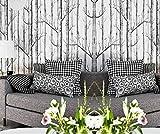 Moderne minimalistische 3D Schwarz-Weiß-Birke Baum Tapete Simulation Holzmaserung Vlies Tapete Bekleidungsgeschäft Hintergrundwand 300cm * 210cm