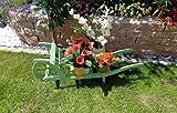Schubkarre Holz, Gartendeko Karre zum Bepflanzen, Blumentöpfe, Pflanzkübel, Pflanzkasten, Blumenkasten, Pflanzhilfe, Pflanzcontainer, Pflanztröge, Pflanzschale, Schubkarren 120 cm HSOF-120-MOOSGRÜN Blumentopf, Holz, moosgrün grün amazon natur Pflanzgefäß, Pflanztöpfe Pflanzkübel