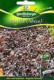 Perilla, Shiso, rot, Perilla frutescens , ca. 50 Samen