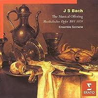 The Musical Offering, BWV 1079: Canon 2 a 2 (Violini in Unisono) - Canon Violino Musica