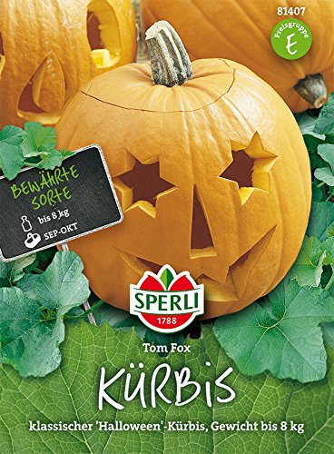 Sperli Kürbis 'Tom Fox' | klassischer Halloween-Kürbis | Päckchen Saatgut