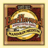 Ernie ball cordes mandoline earthwood medium