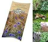 Saatgut Set:'Katzenkräuter', 3 Pflanzen die ihre Katze lieben wird, Samen in schöner Geschenk-Verpackung