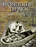 Wonderful Things: Uncovering the World's Great Archaeological Treasures
