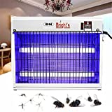 B.N.Brights 60W Metal Electronic Insect/Mosquito Zapper Light Trap Used in Home/Commercial/Industrial, 538mq.ft (BNB-IK, White)