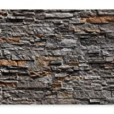 murando - Fototapete Steinoptik 400x280 cm - Vlies Tapete -