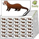 480 Pegatinas - hurón (38x21mm) Etiquetas de animales autoadhesivas de alta calidad de Zooify.