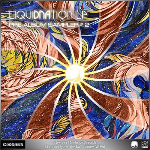 V/A LiquiDNAtion LP - Pre-Album Sampler #2