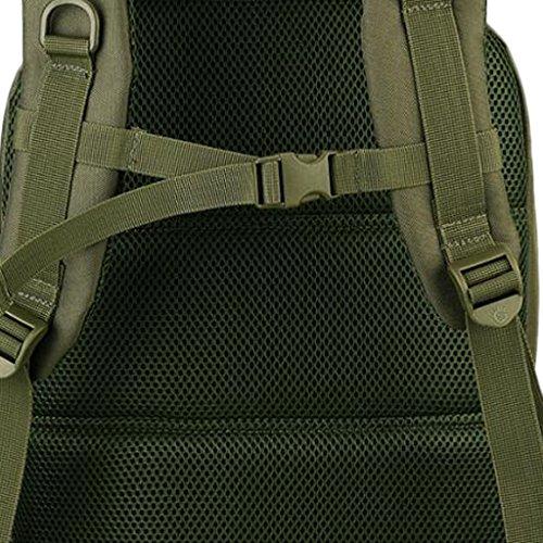 d8a5a4ae70f40 ... Taktischer Rucksack 35L Wanderrucksack Kampfrucksack Trekkingrucksack  Reiserucksack Freizeit Backpack Outdoor Sportrucksack Armeegrün Gazechimp  ...