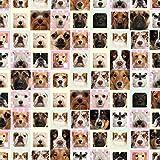 Carta da regalo - 3 fogli di carta da regalo con di cani galleria fotografica
