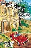 Best Blue Sky Books Blue Sky Books Romance Kindles - The Blue Sky of Spring Review