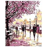 SODIAL(R) DIY Oil Painting Paint by Numbers Cherry Blossoms Park Drawing With Brushes Paint for Adults Kids Beginner Level 40x50cm - Frameless