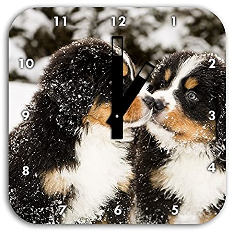 Bernese Mountain Dog puppy in the snow, wall clock diameter 28cm with black square hands and face, decoration items, Designuhr, aluminum composite very nice for living room,
