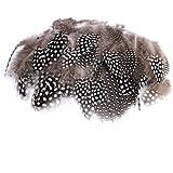 Ogquaton 50 stücke Perlhuhn Federn Hängende Federn Henne Feder Natur Hängende Feder 4,5-8 cm - Natürliche