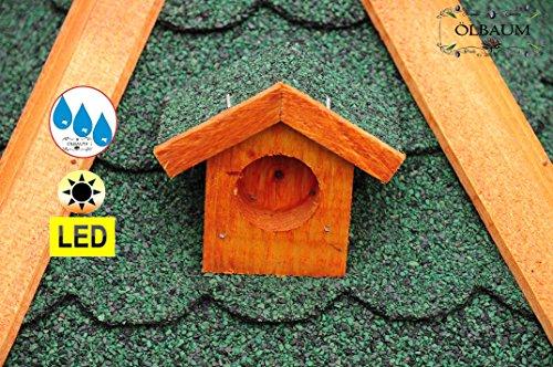 Vogelhaus XXL Premium, ca. 70-75 cm, wetterfest Massivdach, mit Silo,Futtersilo für Winterfütterung,mit Beleuchtung LED-Licht -Holz Nistkästen & Vogelhäuser- aus Holz BGXL75grOS Holz ohne Ständer Vogel + Futterhaus GRÜN - 5
