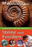 Steine und Fossilien: Beobachten und experimentieren