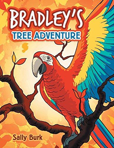 Bradley'S Tree Adventure