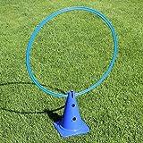 Kombi-Kegel 30 mit Kombi-Ring 70 cm, in 4 Farben, für Agility - Hundetraining (blau)