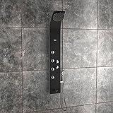 Jaaz Zion Black Aluminum Shower Panel