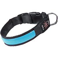 Havenfly Collare Luminoso per Cani,Ricaricabile Tramite USB LED collare,Ultra Luminoso con 3 modalità D'ardore e Misura…